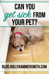Can You Get Sick From Your Pet?