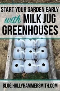 Milk Jug Greenhouses
