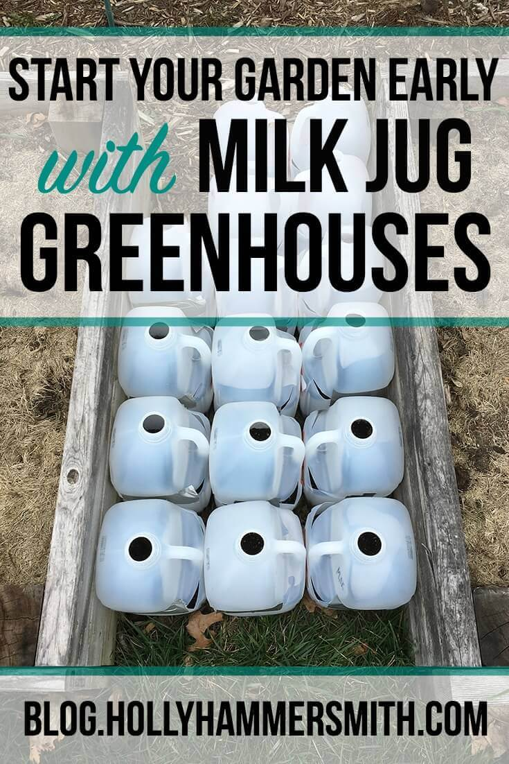 Milk Jug Greenhouses