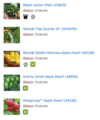Fruit Trees Online