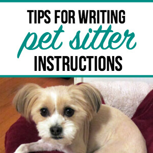 7 Simple Tips for Writing Helpful Pet Sitter Instructions