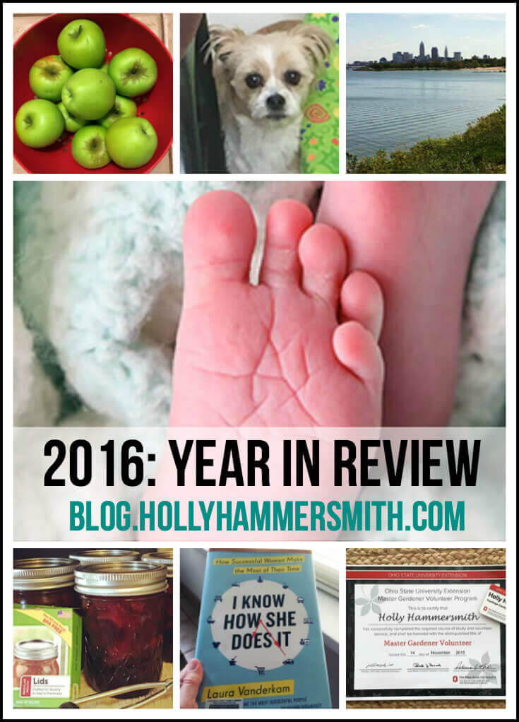 2016 Year Review
