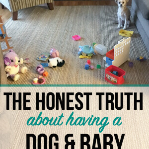 The Honest Truth About Having a Dog and a Baby
