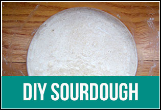 DIY Sourdough Starter Day by Day